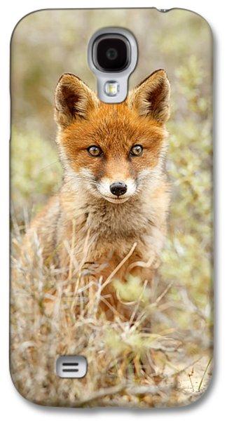 Cute Red Fox Kit Galaxy S4 Case by Roeselien Raimond