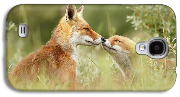 Daddy's Girl - Red Fox Father And Its Young Fox Kit Galaxy S4 Case by Roeselien Raimond