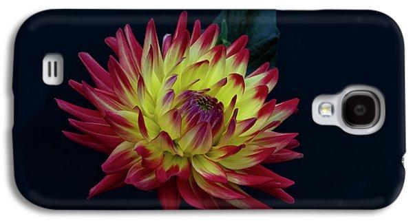Dahlia Galaxy S4 Case