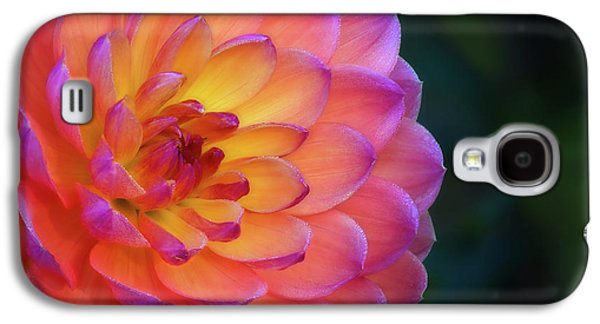 Dahlia Portrait Galaxy S4 Case