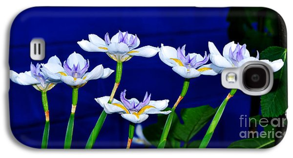 Dainty White Irises All In A Row Galaxy S4 Case