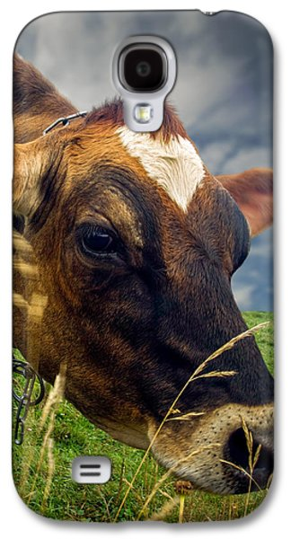 Dairy Cow Eating Grass Galaxy S4 Case