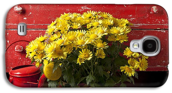 Daisy Plant In Drawers Galaxy S4 Case