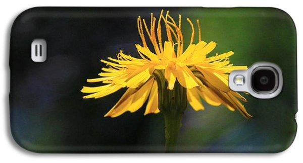 Dandelion Dance Galaxy S4 Case