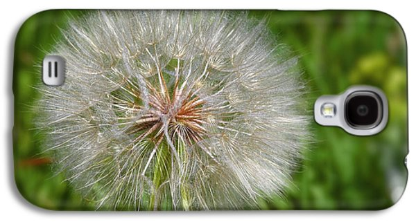 Dandelion Puff - The Summer Queen Galaxy S4 Case by Christine Till