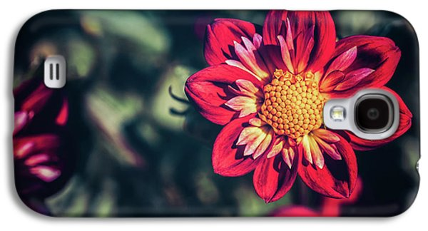 Darling Dahlia Galaxy S4 Case