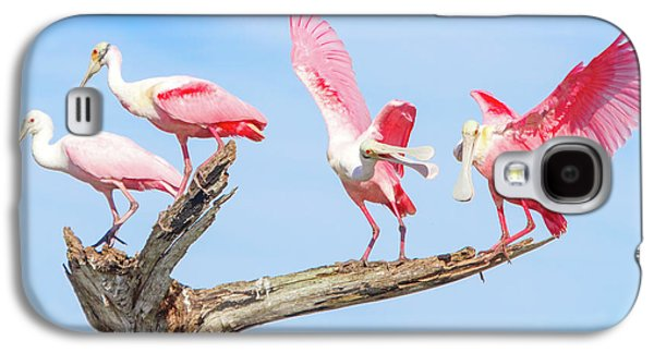 Day Of The Spoonbill  Galaxy S4 Case by Mark Andrew Thomas
