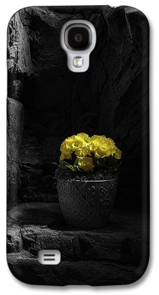 Daylight Delight Galaxy S4 Case by Tom Mc Nemar