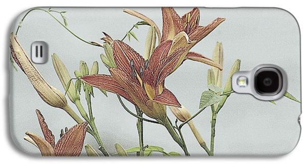 Daylilly Dreaming Galaxy S4 Case