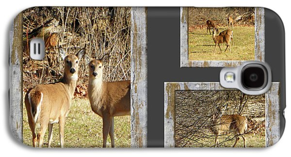 Deer Lovers Galaxy S4 Case by Tina M Wenger