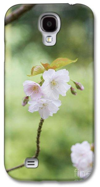Delicate Blossom Galaxy S4 Case