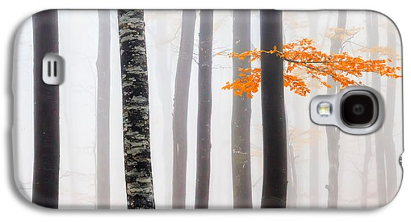 Delicate Forest Galaxy S4 Case by Evgeni Dinev