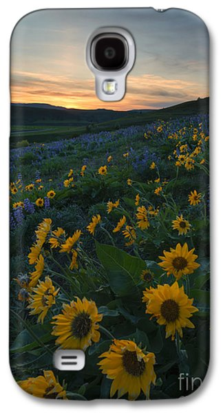 Desert Sunset Galaxy S4 Case - Desert Gold by Mike Dawson