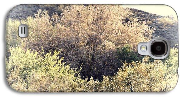 Desert Ironwood Afternoon Galaxy S4 Case
