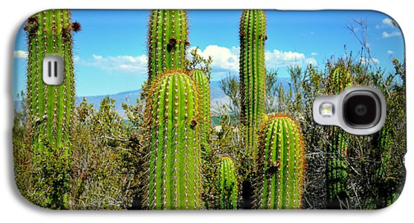 Desert Plants - All In The Family Galaxy S4 Case