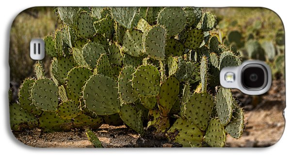 Desert Prickly-pear No6 Galaxy S4 Case by Mark Myhaver
