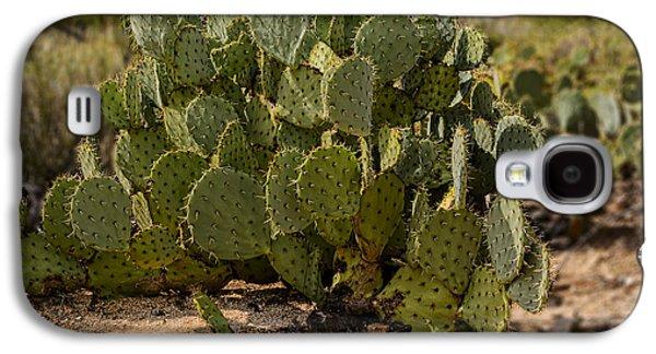 Desert Prickly-pear No6 Galaxy S4 Case
