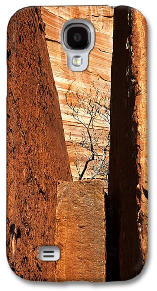 Desert Vise Galaxy S4 Case