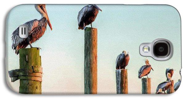 Destin Pelicans-the Peanut Gallery Galaxy S4 Case