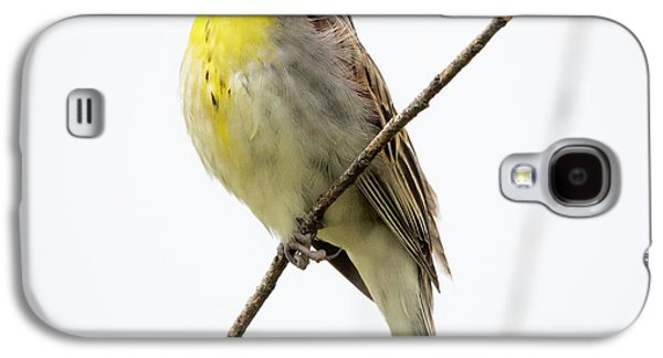 Dickcissel  Galaxy S4 Case