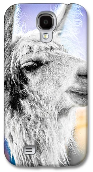 Dirtbag Llama Galaxy S4 Case by TC Morgan