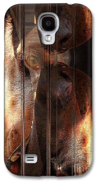 Doberman Pincher Galaxy S4 Case
