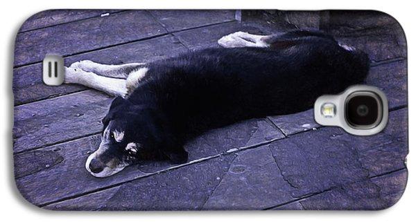 Dog Days Galaxy S4 Case