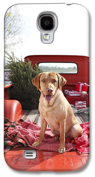 Dog In Truck Bed With Pine Tree Outdoors Galaxy S4 Case by Gillham Studios
