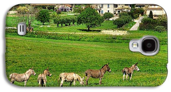 Donkeys In Provence Galaxy S4 Case
