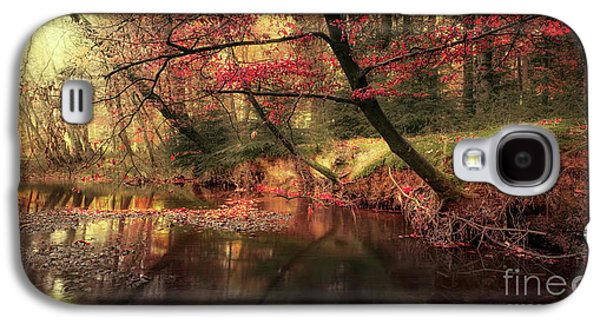 Dreamy Autumn Forest Galaxy S4 Case by Svetlana Sewell