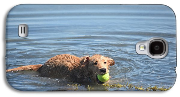 Duck Tolling Retriever With A Tennis Ball Swimming Galaxy S4 Case by DejaVu Designs