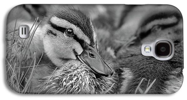 Ducklings Cuddling Bw Galaxy S4 Case