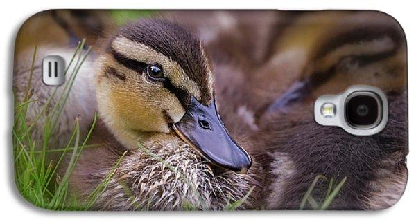 Ducklings Cuddling Galaxy S4 Case