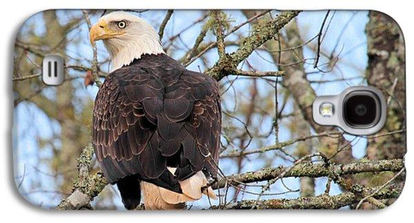 Eagle Eye On You  Galaxy S4 Case