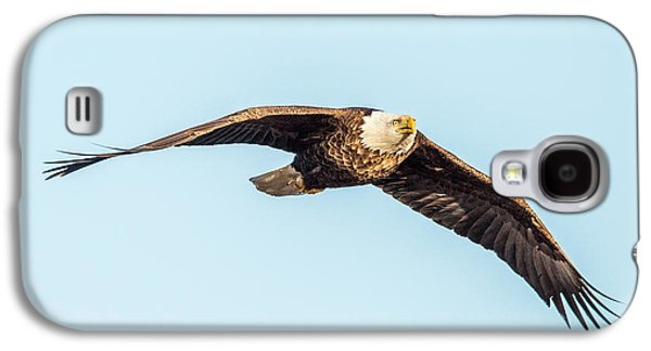 Eagle Front View Galaxy S4 Case by Paul Freidlund