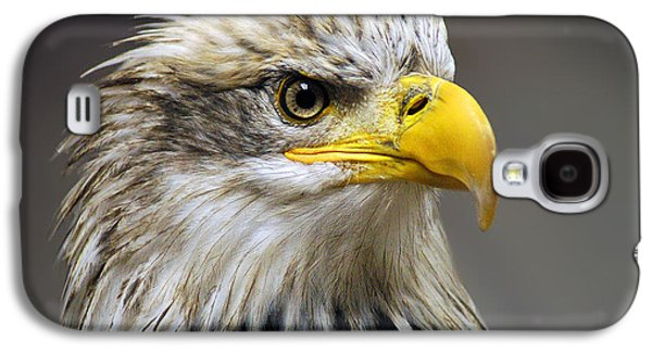 Eagle Galaxy S4 Case by Harry Spitz