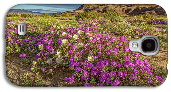 Early Morning Light Super Bloom Galaxy S4 Case by Peter Tellone
