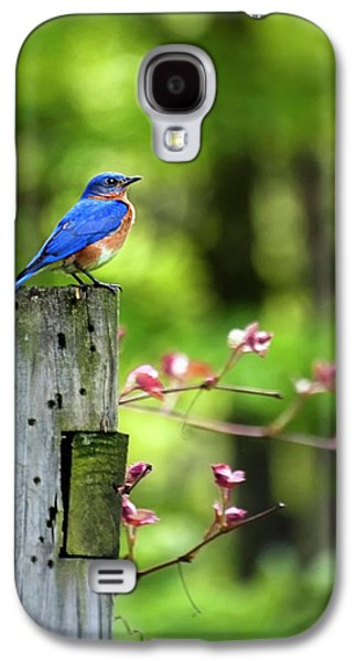 Eastern Bluebird Galaxy S4 Case by Christina Rollo