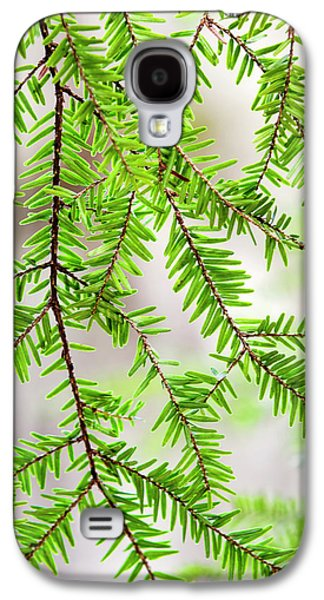 Galaxy S4 Case featuring the photograph Eastern Hemlock Tree Abstract by Christina Rollo