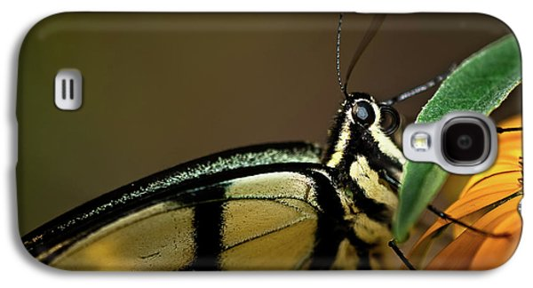 Eastern Tiger Swallowtail Butterfly Galaxy S4 Case