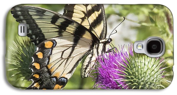 Eastern Tiger Swallowtail Galaxy S4 Case by Ricky L Jones