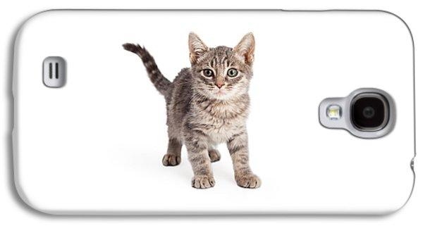 Eight Week Old Playful Tabby Kitten Galaxy S4 Case by Susan Schmitz