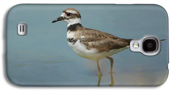 Killdeer Galaxy S4 Case - Elegant Wader by Fraida Gutovich