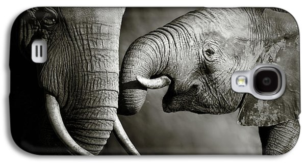 Galaxy S4 Case - Elephant Affection by Johan Swanepoel