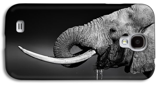 Elephant Bull Drinking Water Galaxy S4 Case by Johan Swanepoel