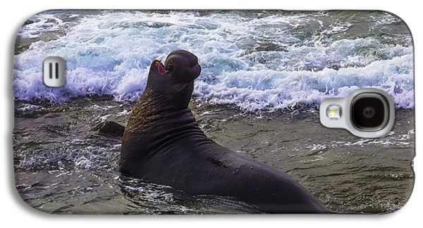 Elephant Bull Seal In Surf Galaxy S4 Case by Garry Gay