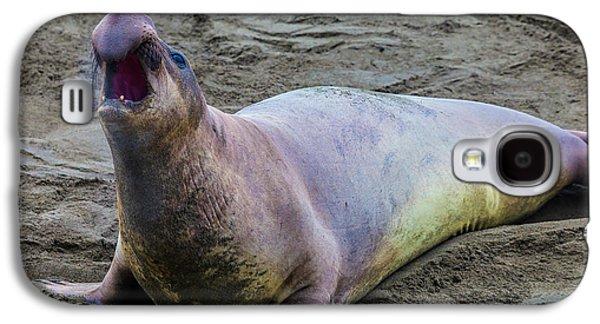 Elephant Seal Bull Galaxy S4 Case