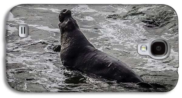 Elephant Seal In Surf Galaxy S4 Case by Garry Gay