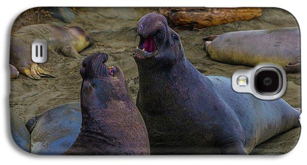 Elephant Seals Fighting On The Beach Galaxy S4 Case