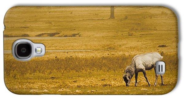 Elk Galaxy S4 Case
